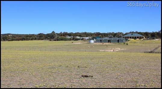 Lavendale Farmland (4)