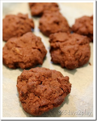 Chocolate Cookies (2)