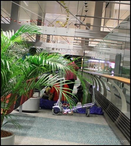 Changi Airport (11)