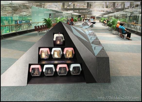 Changi Airport (6)