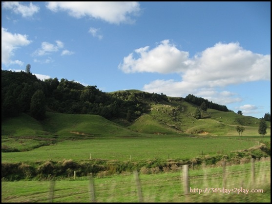 New Zealand North Island Countryside (2)