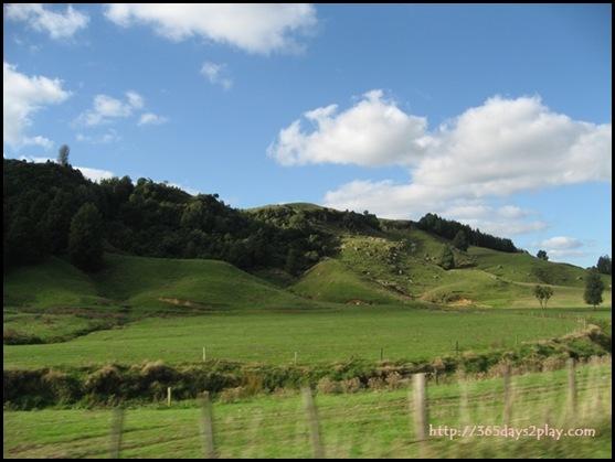 New Zealand North Island Countryside (2)