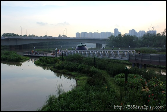 Sengkang Floating wetland (11)