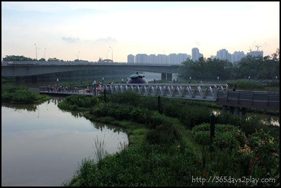 Sengkang Floating wetland (11)