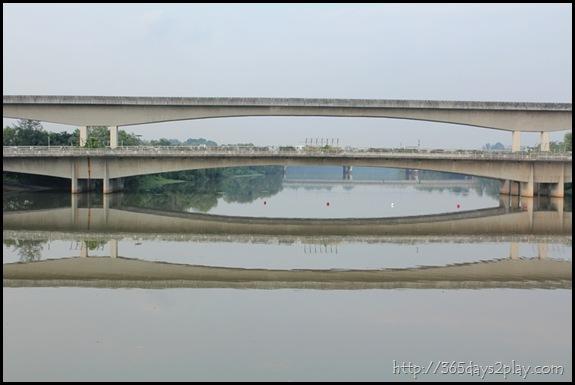Sengkang Floating wetland (12)