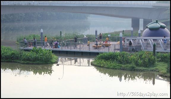 Sengkang Floating wetland (13)