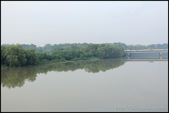Sengkang Floating wetland (2)