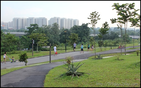 Sengkang Floating wetland (3)