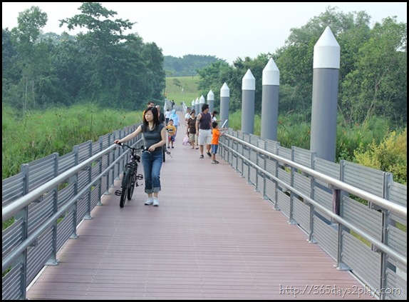 Sengkang Floating wetland (8)