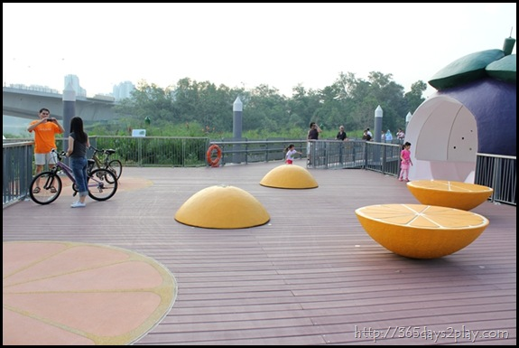 Sengkang Floating wetland (9)