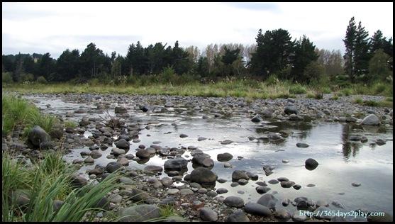 Tongariro River (3)
