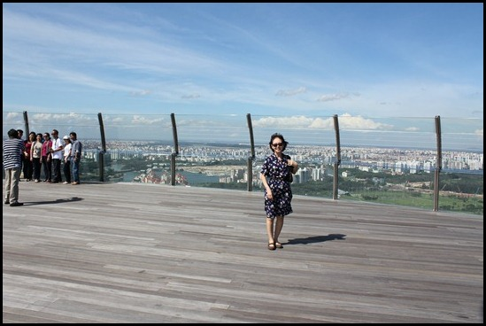 Marina Bay Sands SkyPark (2)