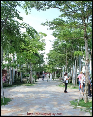 Marina Bay Sands SkyPark (3)