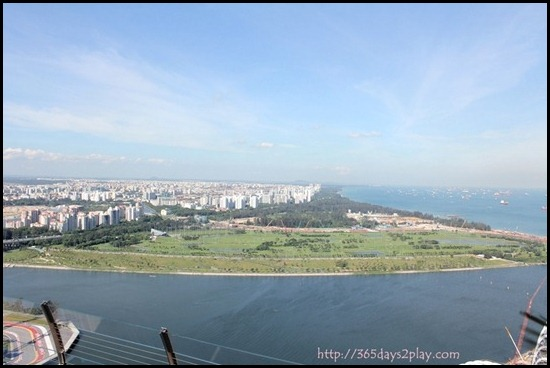 View from Marina Bay Sands SkyPark (3)