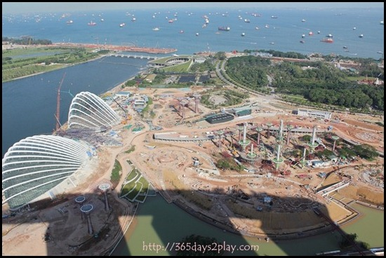 View from Marina Bay Sands SkyPark (7)