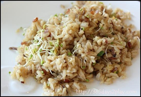 Dann's Daily - Wild Rice (2)