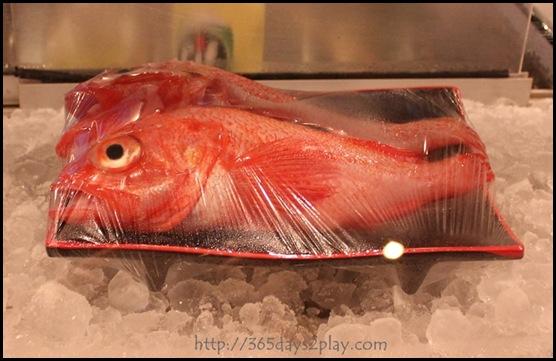 Kinki - Kinki Fish
