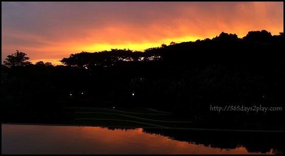 HortPark Sunset (5)