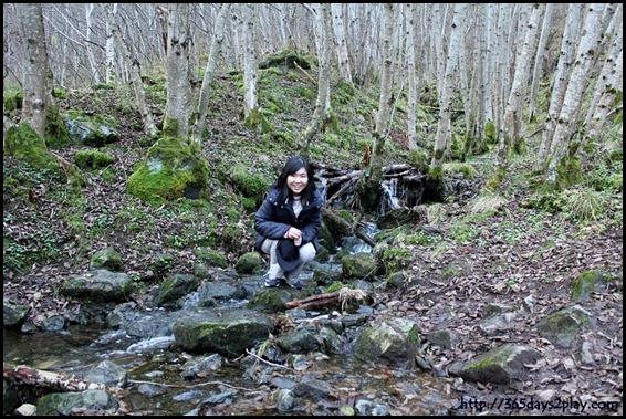 Hiking in Flåm (9)