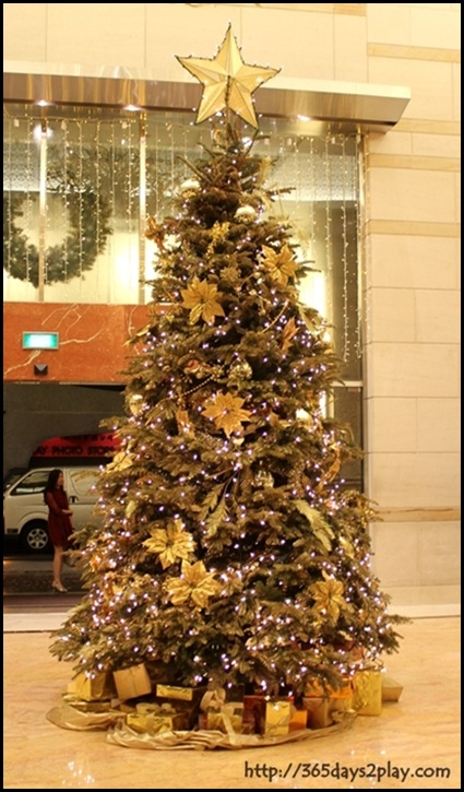 Grand Park City Hall Christmas Tree