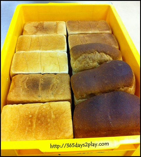 Baking Industry Training Centre - Plain loaves of bread