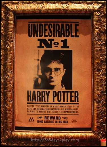 Harry Potter The Exhibition - Undesirable No 1