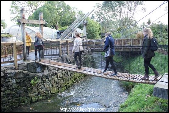 Auckland Zoo (46)