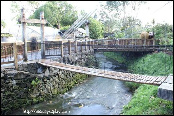 Auckland Zoo (47)