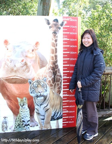 Auckland Zoo Cafe Prices