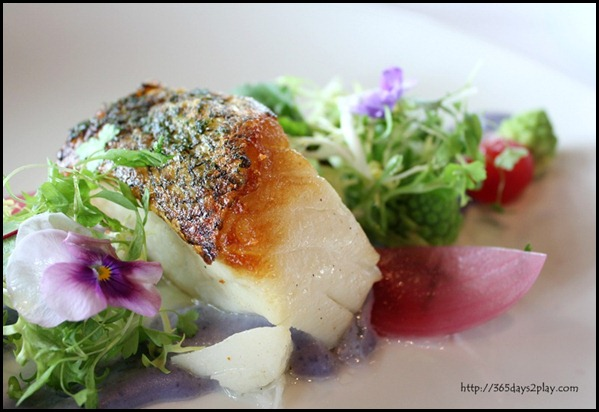 Il Lido Sentosa - Silver Cod with Vitelotte Garlic Fondue and Romanesco $45 (3)
