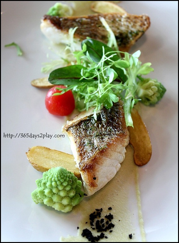 Il Lido Sentosa - Wild Snapper with Romanesco and Caclucco sauce (1)