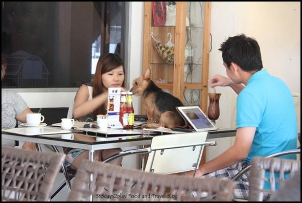 Sunray Cafe - (33)
