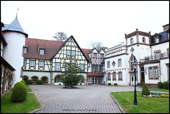 Château de l'Ile - Strasbourg (30)