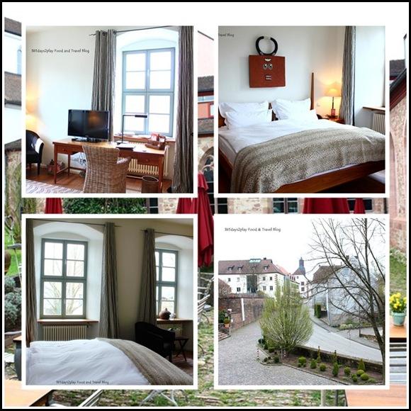 Kloster Hornbach (5)
