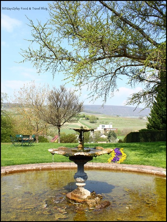 Chateau d'Isenbourg grounds (9)