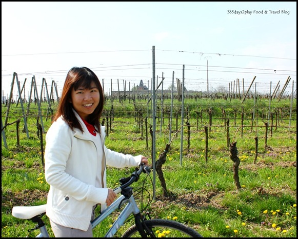Cycling around Chateau d'Isenbourg (4)