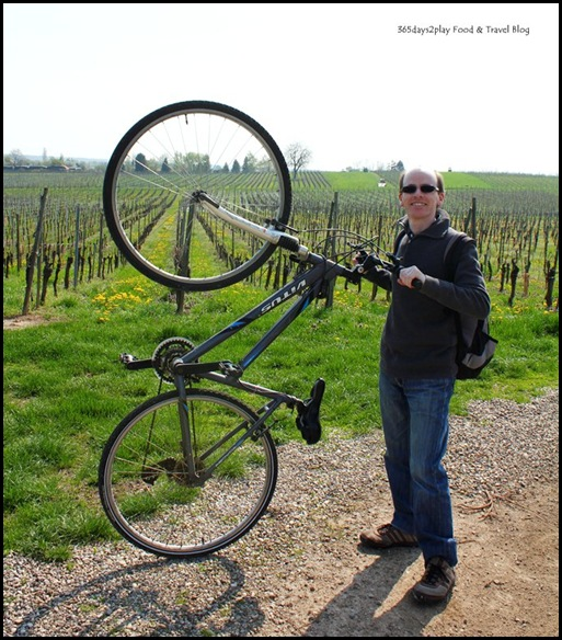Cycling around Chateau d'Isenbourg (8)