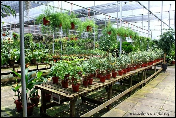 GardenAsia (4)