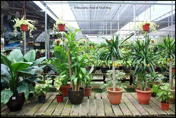 GardenAsia (8)
