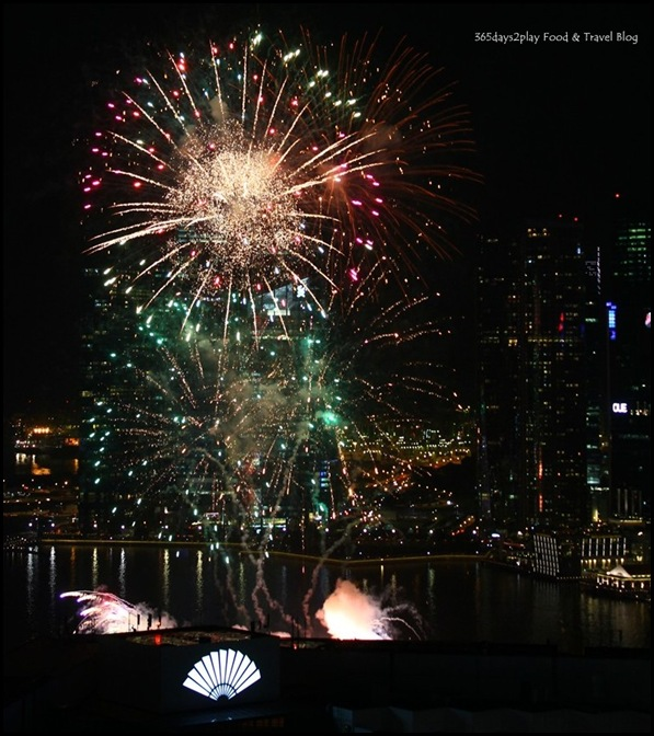 National Day Fireworks (2)