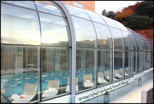The Shilla - Swimming Pool (9)