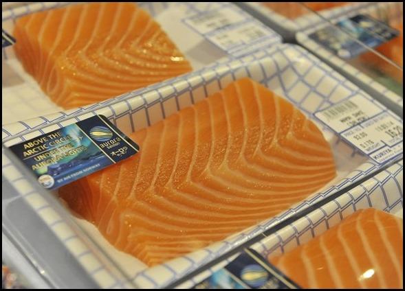 Aurora Salmon (8)