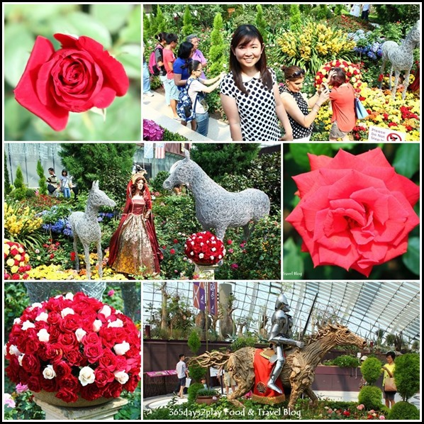 War of the Roses display at Gardens by the Bay (2)