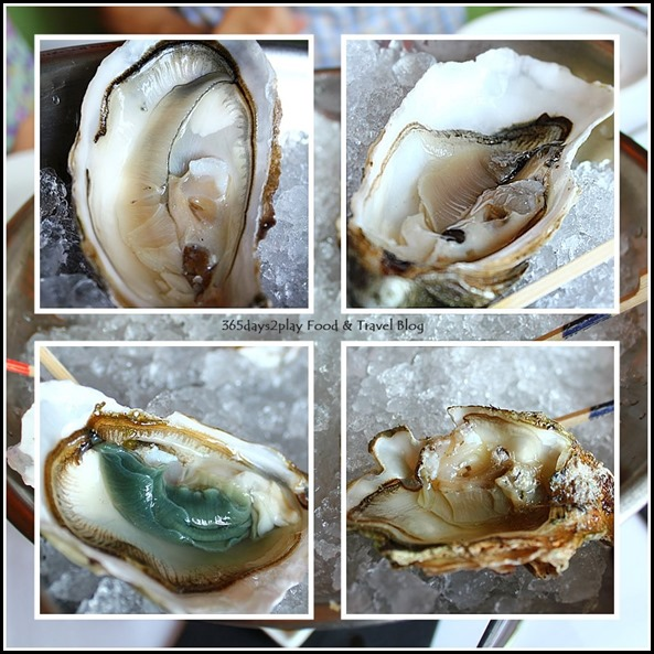 Absinthe Restaurant Francais - 4 types of oysters (Royale, Wild, Irish)