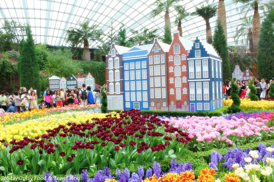 tulip mania 2014 18 - Garden By The Bay Food