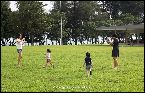 Parkland Green kids playing