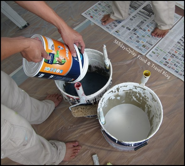 Dulux Painting Serice (7)