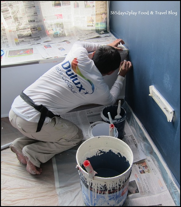 Dulux Painting Serice (9)