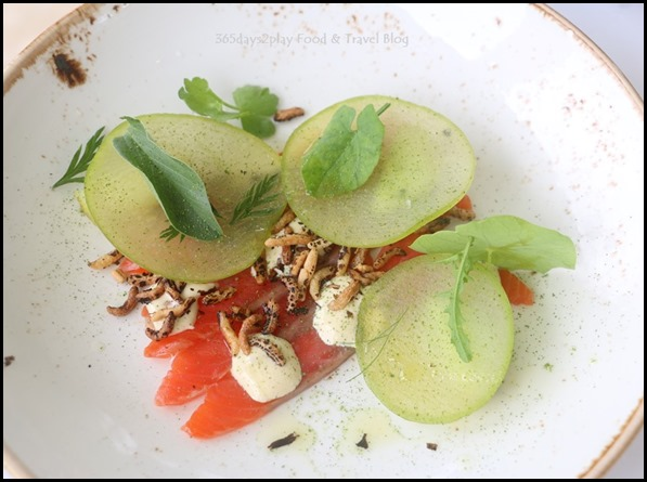 Aravina Estate - Citrus cured ocean trout, oyster cream, apple, burnt cucumber, celery (1)