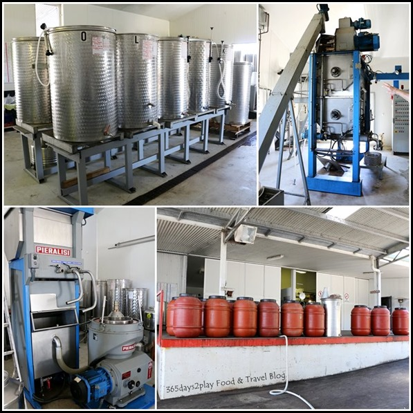 Olive Oil Making Machines